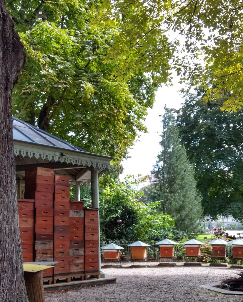 park apiary bee hives gazebo trees Jardin du Luxembourg