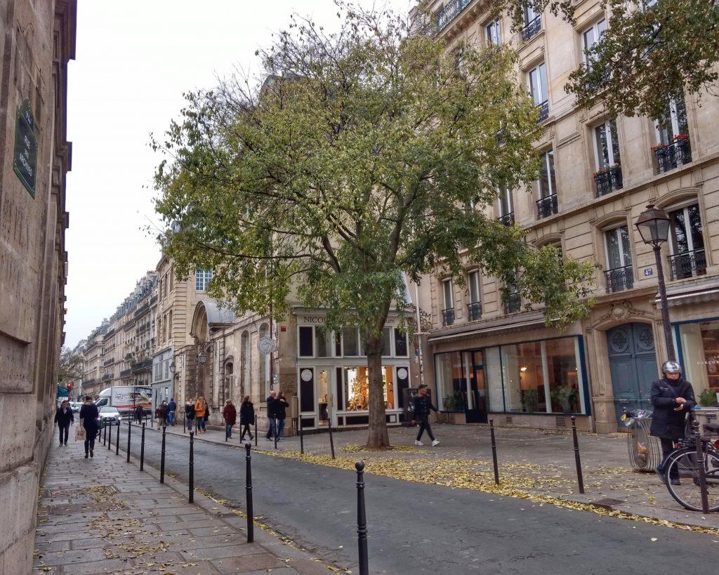 street scene Paris tree pedestrians cobblestones
