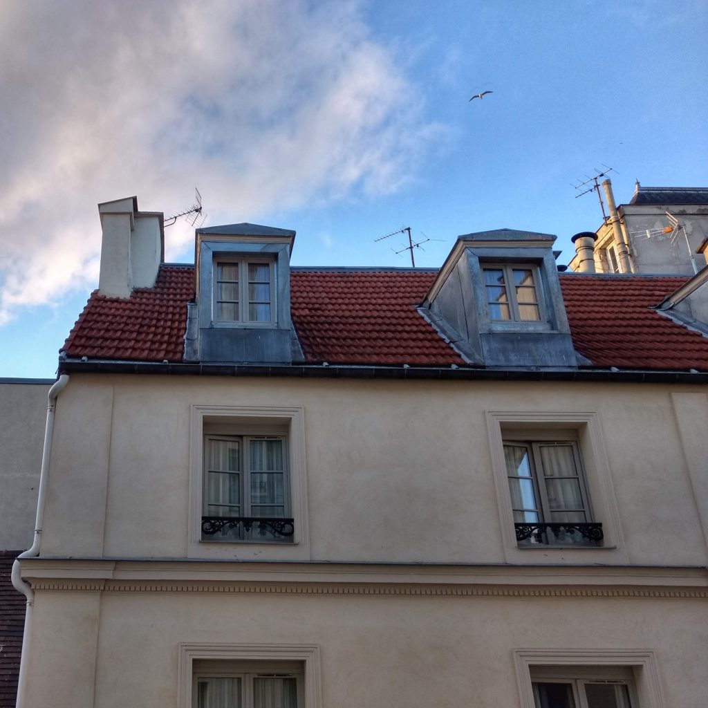 view from a top story window building across street morning light blue sky clouds birds Haut Marais, Paris